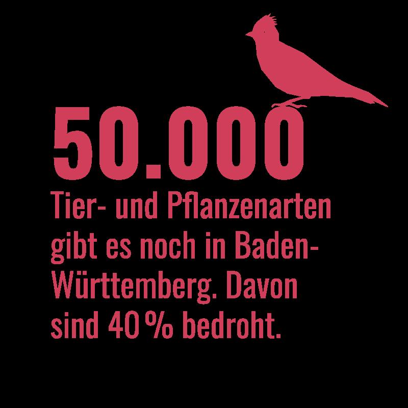 VA_Infografik_Bedrohte_Tier-und_Pflanzenarten